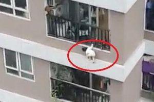 'Ông mụ' đỡ được bé gái rơi từ tầng 12 kể lại thời khắc sinh tử