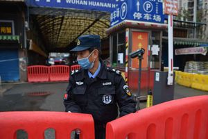 Hé lộ báo cáo nội bộ của WHO về chuyến đi tới Vũ Hán