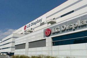 Thu hút vốn FDI: 'Ðại bàng' mở rộng tổ