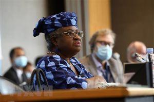 Tân Tổng Giám đốc WTO chính thức bắt đầu ngày làm việc đầu tiên