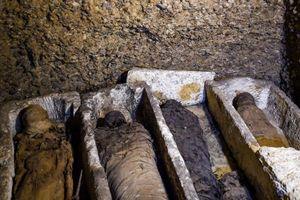 50 xác ướp bí ẩn trong ngôi mộ cổ Ai Cập