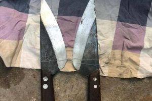 Bắt hai thanh niên vô cớ cầm dao đuổi chém hàng loạt người trên phố