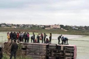 Tránh xe máy, xe ô tô chở công nhân lao xuống ruộng ở Bắc Giang