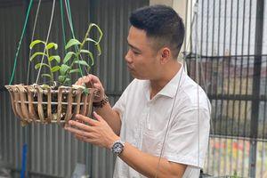 Nguyễn Thắng - Doanh nhân trẻ thành đạt cùng với niềm đam mê hoa lan