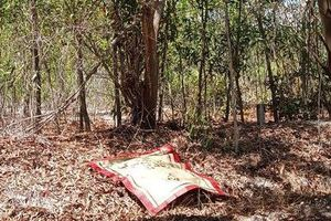 Vào rừng bắt ong, phát hiện thi thể người treo lơ lửng