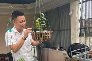 Nguyễn Văn Thắng: Doanh nhân trẻ sở hữu vườn lan tiền tỷ trên sân thượng