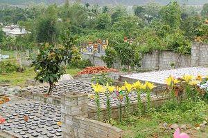 Xem xét đưa nghĩa trang an táng hơn 3.000 thai nhi vào quy hoạch