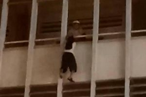 Bảo vệ trường kể phút sinh tử cứu nữ sinh treo lơ lửng ở lan can tầng 3