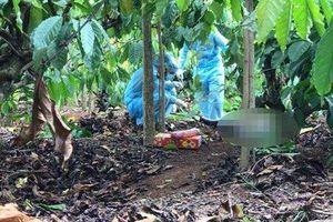 Đắk Lắk: Phát hiện nửa phần thi thể nam giới trong rẫy cà phê