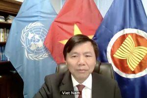 Việt Nam ủng hộ hoạt động của Phái bộ Gìn giữ Hòa bình tại Nam Sudan