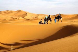 Những người bảo vệ vương quốc cổ đại trên sa mạc ở Trung Quốc