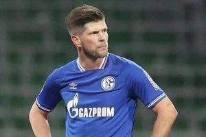 Thảm họa Schalke 04