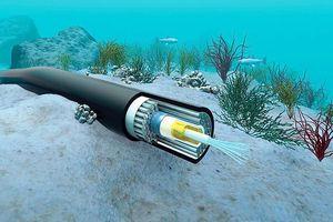 Biến cáp quang biển thành thiết bị đo địa chấn