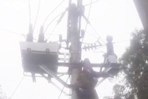 Điện Biên: Trèo lên cột điện cao thế, một người bị điện giật trọng thương