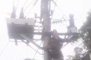 Người đàn ông bị điện giật treo trên cột điện cao thế