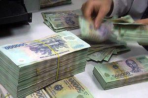 Thu hồi hơn 11,5 tỉ đồng tiền hoàn thuế GTGT của Công ty Hoàng Nam Anh