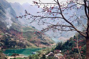 Hoa gạo tháng 3 – Ngọn đèn đỏ trên địa đầu tổ quốc Hà Giang
