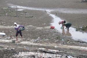 Hải Ninh: Ngao chết bất thường, nhiều chủ đồng nuôi mất trắng hàng trăm triệu đồng