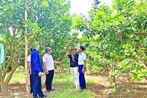 Huyện Hà Trung thu hút đầu tư phát triển sản xuất, kinh doanh