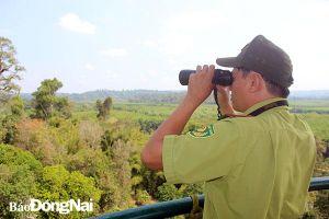 Căng sức giữ rừng mùa khô