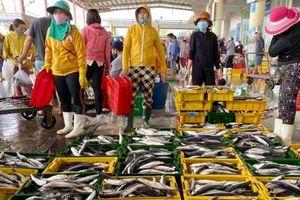 Ngư dân miền Trung liên tục trúng 'lộc biển' sau Tết