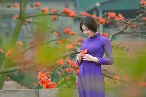 Facebook, Zalo 'sáng rực' hình ảnh áo dài Việt Nam