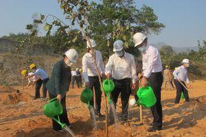 EVN phấn đấu trồng mới và chăm sóc 1 triệu cây xanh