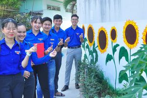 Bức tường hoa hướng dương dài 100m của các bạn trẻ Cần Thơ