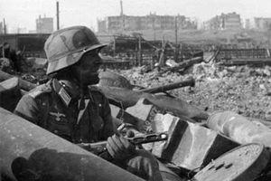 Bí ẩn 'đội quân' chuột và nỗi ám ảnh kinh hoàng của Đức Quốc xã trong Trận Stalingrad