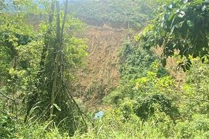 Đà Nẵng: Ô tô tải chở keo mất phanh lật xuống vực đè chết nữ công nhân