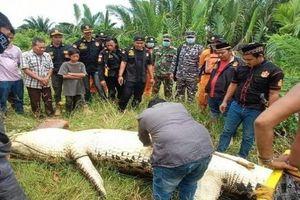 Bé trai 8 tuổi mất tích khi đi bơi được tìm thấy trong bụng cá sấu