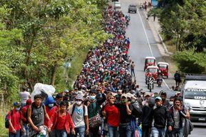 Mỹ bắt 100.000 người di cư trái phép tại biên giới trong tháng 2