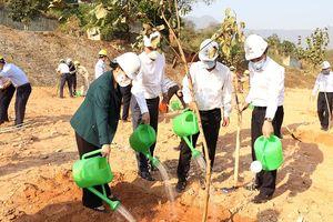 EVN phấn đấu trồng mới, chăm sóc một triệu cây xanh