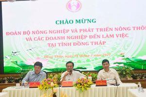 Tư vấn, hoạch định chiến lược phát triển nông nghiệp ở Đồng Tháp