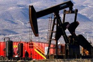 Trung Quốc: Nhu cầu dầu thô có thể đang được đánh giá quá cao