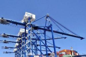 Hải Phòng: Đầu tư hơn 6.400 tỉ đồng xây dựng 2 bến container