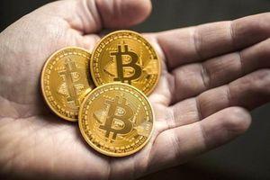 Phân biệt đồng Pi và Bitcoin để thấy sự rủi ro của đồng tiền ảo mới