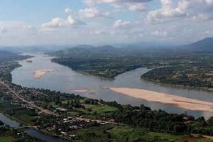 Campuchia: Nguồn cá cạn kiệt do dòng chảy vào Biển Hồ bị bóp nghẹt