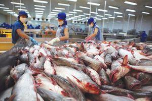 Tín hiệu vui từ xuất khẩu thủy sản