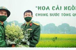 Hoa cải ngồng chung bước tòng quân