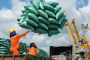 Xuất khẩu gạo: 'Đòn bẩy' từ các FTA