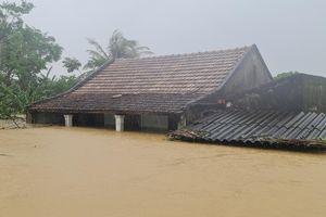 Bộ NN-PTNT tìm hướng thoát lũ cho 2 huyện Lệ Thủy, Quảng Ninh của Quảng Bình