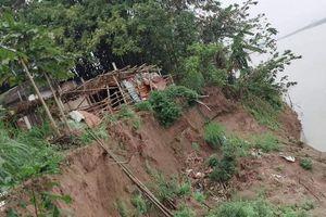 Bờ sông Hồng sạt lở, hơn 20 hộ dân sợ bị 'Hà Bá' nuốt chửng