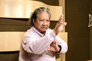 Sao võ thuật Hồng Kim Bảo tái xuất sau thời gian vắng bóng