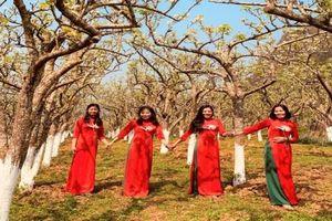 Tuần lễ áo dài: Phát huy vẻ đẹp phụ nữ Việt Nam