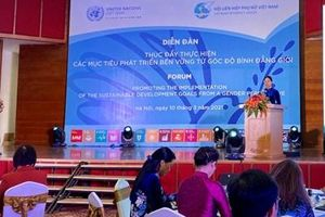 'Thúc đẩy việc thực hiện các mục tiêu phát triển bền vững từ góc độ bình đẳng giới'