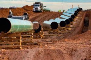 263 tổ chức phi chính phủ phản đối đường ống dẫn dầu Uganda-Tanzania