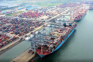 Doanh nghiệp gặp khó vì cước vận tải biển tăng