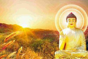 7 bài học Đức Phật răn dạy để có thể sống thọ và tích phúc