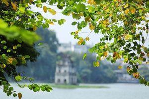 Hà Nội: Chất lượng không khí ở một số khu vực đang cải thiện rõ rệt